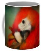 Red Scarlet   Macaw Parrot Sammy Coffee Mug
