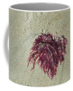 Red Seaweed Coffee Mug