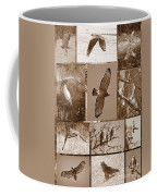 Red-shouldered Hawk Poster - Sepia Coffee Mug by Carol Groenen