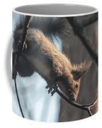 Red Squirrel Licking Dew Droplets  Coffee Mug