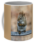 Red Squirrel On Patio Chair II Coffee Mug