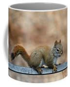Red Squirrel On Patio Chair Coffee Mug