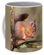 Red Squirrel Perched Portrait Coffee Mug