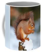 Red Squirrel Portrait Coffee Mug