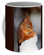 Red Squirrel With Nut In Snow Coffee Mug