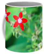 Red Star Coffee Mug