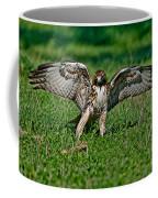 Red-tailed Hawk & Gopher Snake Coffee Mug