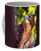 Red Tailed Hawk - 66 Coffee Mug