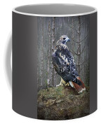 Red Tailed Hawk Perched On A Rock Coffee Mug