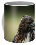 Red-tailed Hawk Portrait Coffee Mug