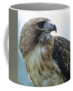 Red-tailed Hawk Profile Coffee Mug
