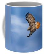 Red-tailed Hawk Soaring Square Coffee Mug