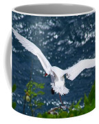 Red Tailed Tropic Bird Coffee Mug