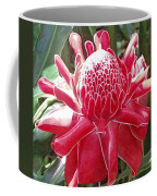 Red Torch Ginger Coffee Mug