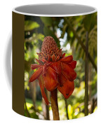Red Torch Ginger Lily In Hawaii Coffee Mug