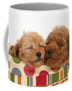 Red Toy Poodle Puppies Coffee Mug