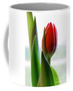 Red Tulip Day 1 Coffee Mug