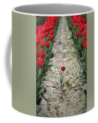Red Tulips Coffee Mug by Jim Corwin