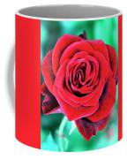 Red Velvet Palm Springs Coffee Mug