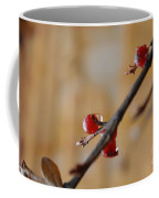 Red Wet And Luscious Coffee Mug
