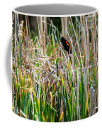 Red-winged Black Bird In The Cattails Coffee Mug