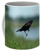 Red-winged Blackbird Landscape Coffee Mug