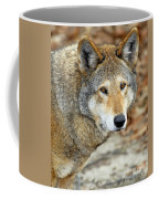 Red Wolf Portrait Coffee Mug