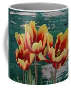 Red Yellow Tulips Coffee Mug