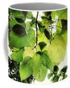 Catalpa Branch Coffee Mug