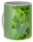 Redbud Water Droplets Coffee Mug