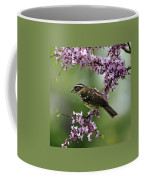 Redbud With Grosbeak Coffee Mug