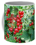 Redcurrant Berries Coffee Mug