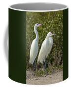 Reddish Egret Egretta Rufescens Pair Coffee Mug