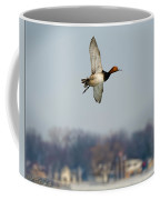 Redhead Duck Over Harsens Island Michigan Coffee Mug