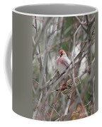 Redpoll And Pine Siskin Coffee Mug