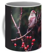 Redpoll On Crabapple Tree Coffee Mug