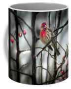 Reds Of Winter Coffee Mug