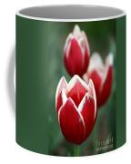 Redwhitetulips6838-1 Coffee Mug