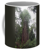 Redwood Fairy Ring Coffee Mug