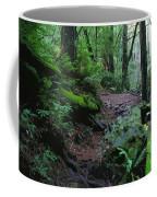 Redwood Forest Scene 1 Coffee Mug
