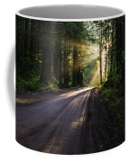 Redwood Magic Coffee Mug
