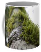 Redwood Branches Coffee Mug
