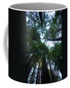 Redwoods II Coffee Mug