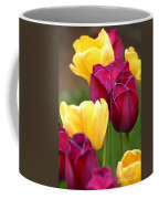 Redyellowtulips6728 Coffee Mug