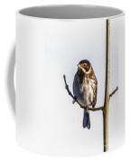 Reed Bunting Emberiza Schoeniclus Coffee Mug