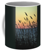 Reeds At Sunset Island Beach State Park Nj Coffee Mug