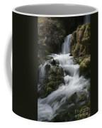 Reeds Springs Falls Coffee Mug