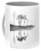 Reflected Calm Coffee Mug