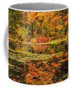 Reflecting Colors Coffee Mug