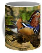 Reflecting Mandarin Coffee Mug
